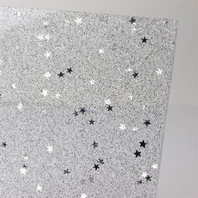 Perspex Panels Silver Star Close Up